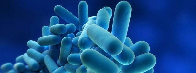 Legionella Prevention